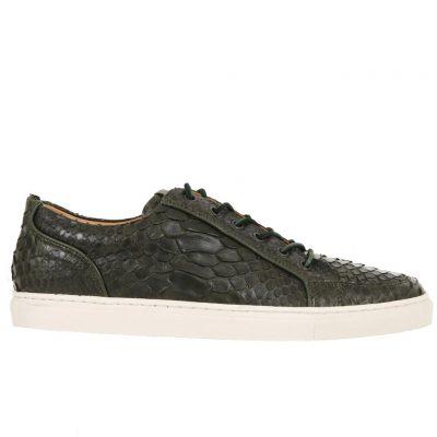 sneakers python kaki